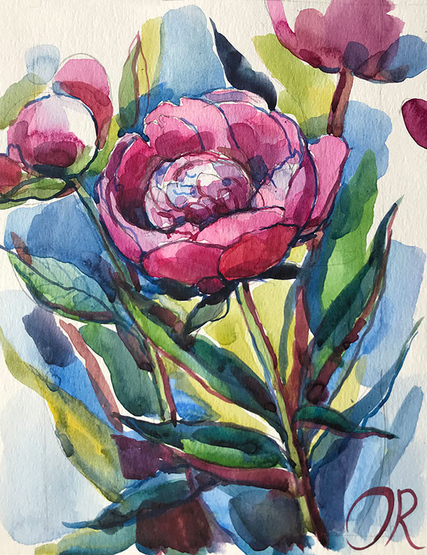 Peonies watercolor by Olga Rogachevskaya-Chu